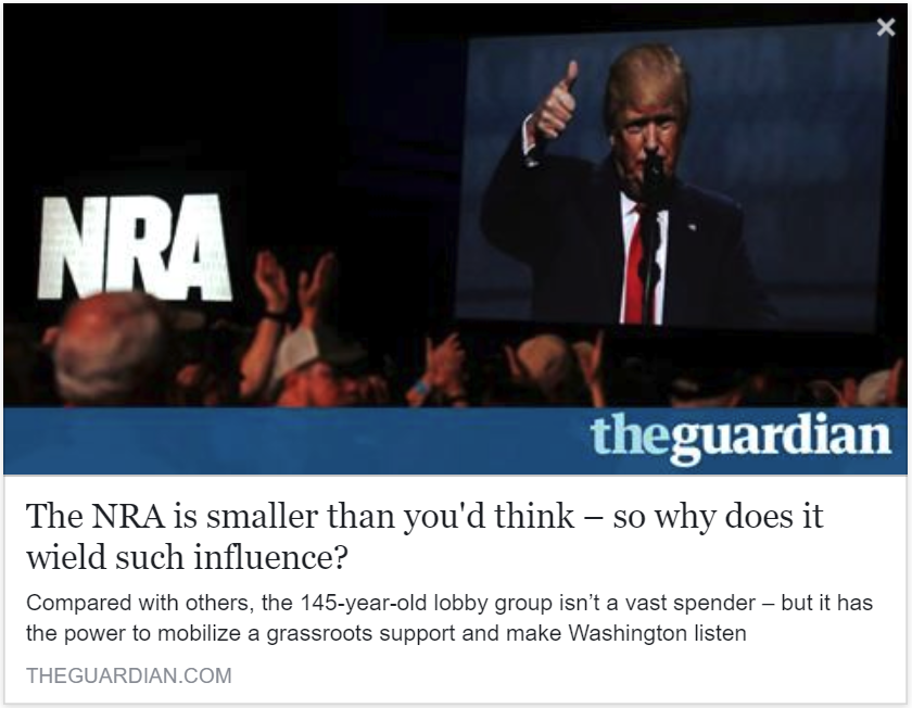 The Guardian - The NRA is smaller than you'd think – so why does it wield such influence?