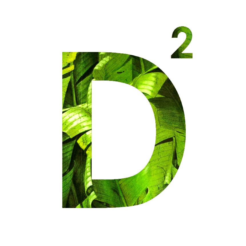 D2_5.jpg
