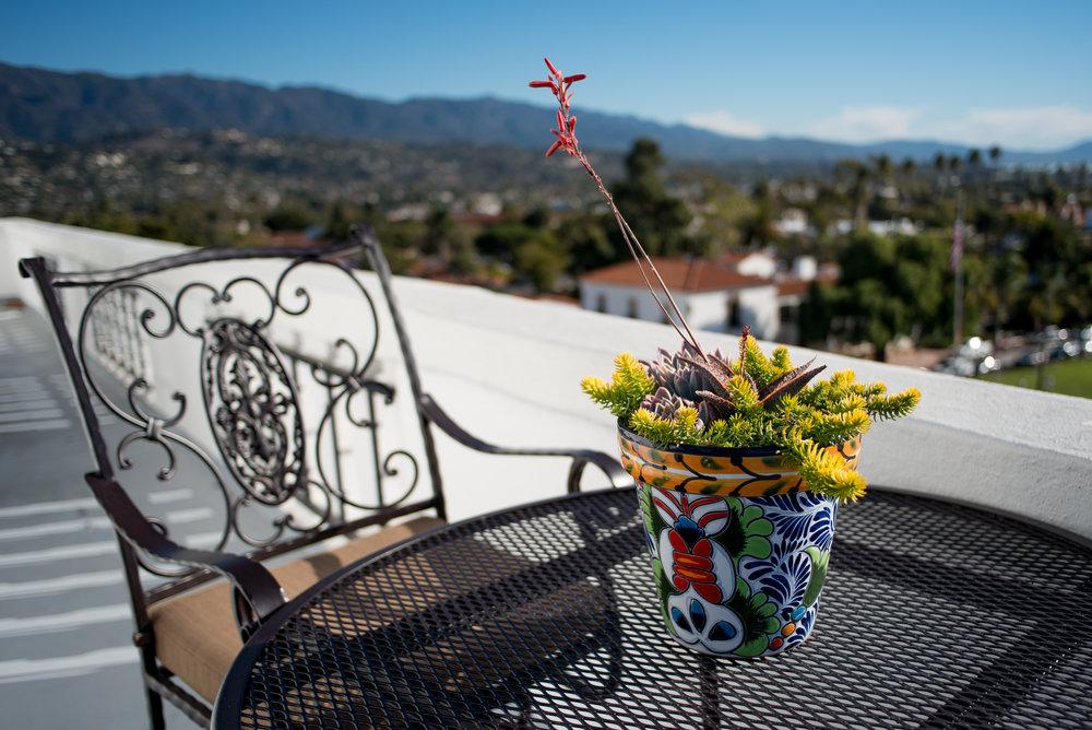 31_Succulent_Mexican_Outdoor_Pot_Business_EL.jpg