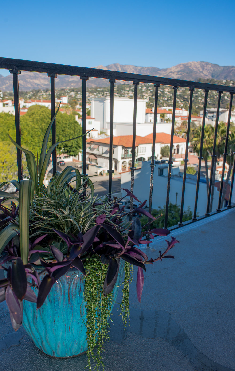 38_succulents_Outdoor_Plants_Glazed_Pot_Business_EL.jpg