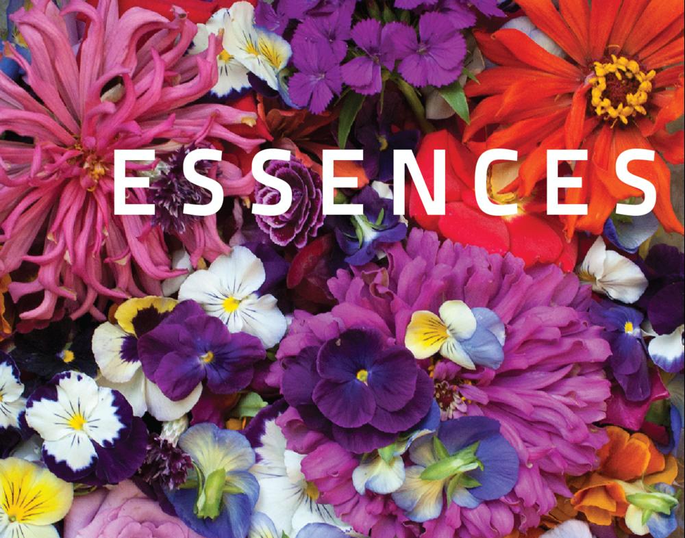Cabinet-Essences-L.png