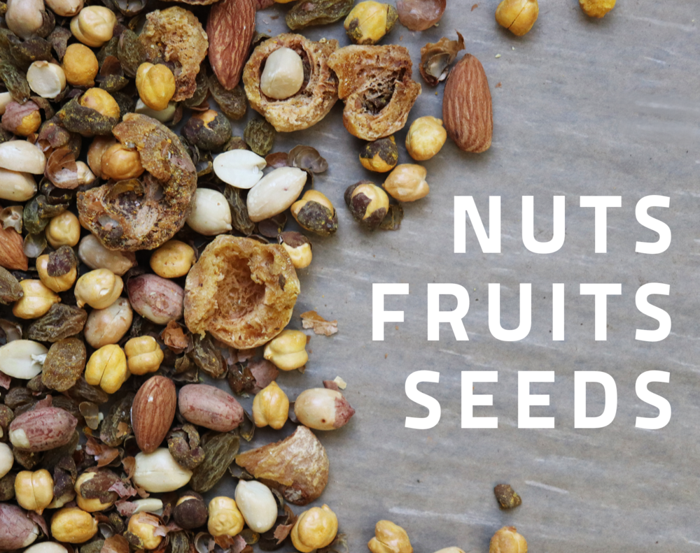 nuts fruits seeds.png