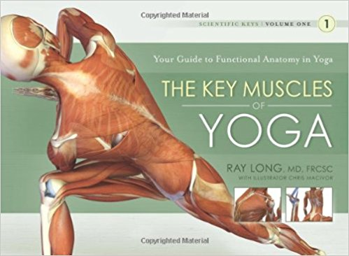 The Key Muscles of Yoga, Volume 1,  by Ray Long   Yoga Anatomy