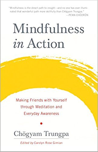 Mindfulness In Action,  by Chgyam Trungpa   Meditation