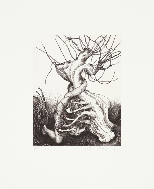 Daphne Rejecting Apollo, 2010, Hard-ground and soft-ground etching with drypoint, Image size: 9 3/4 x 7 3/4 inches