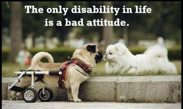b8c6a255cd94d498b286d79a574e062f--disability-quotes-disability-awareness.jpg