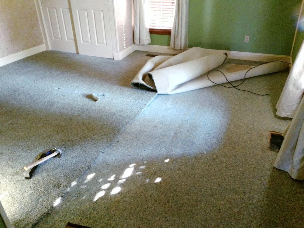 Master_bedroom_carpet_demo.jpeg