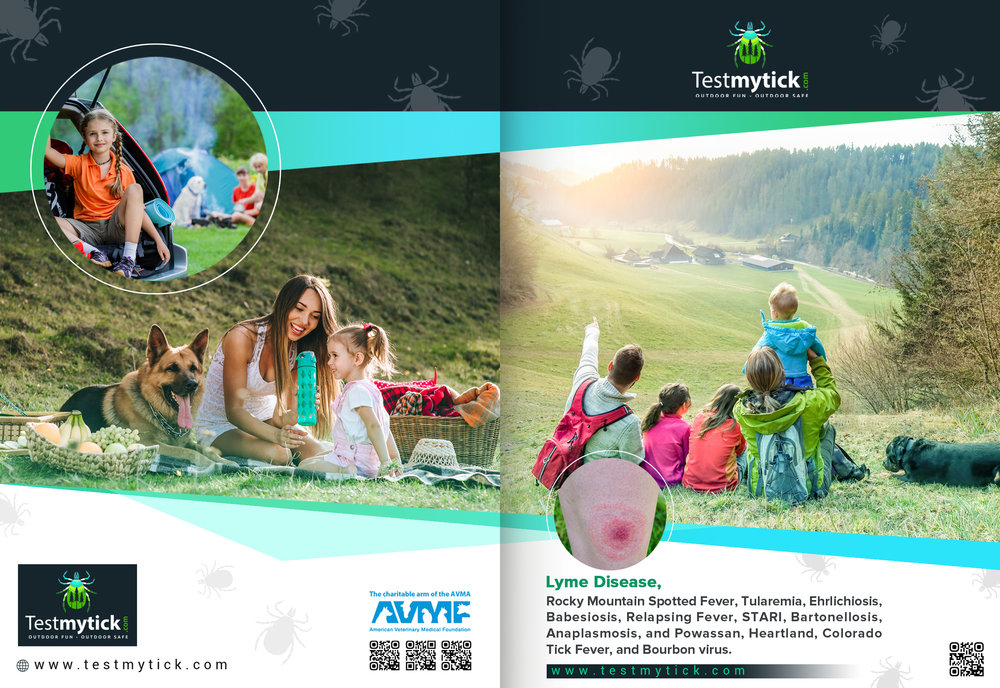 Tick Disease and Testing_Brochure_Front_150617.jpg