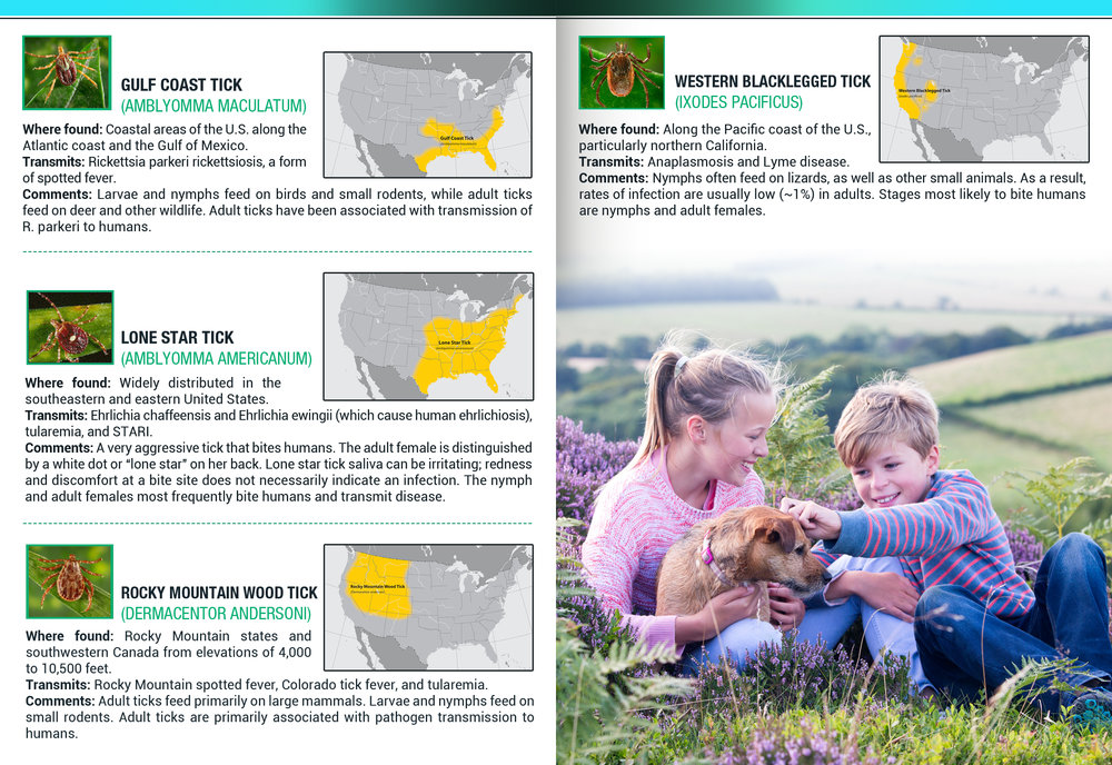 Tick Disease and Testing_Brochure_Inside_6_150617.jpg