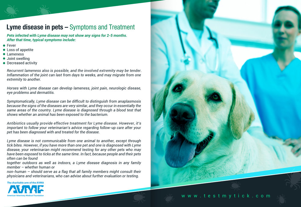 Tick Disease and Testing_Brochure_Inside_8_150617.jpg