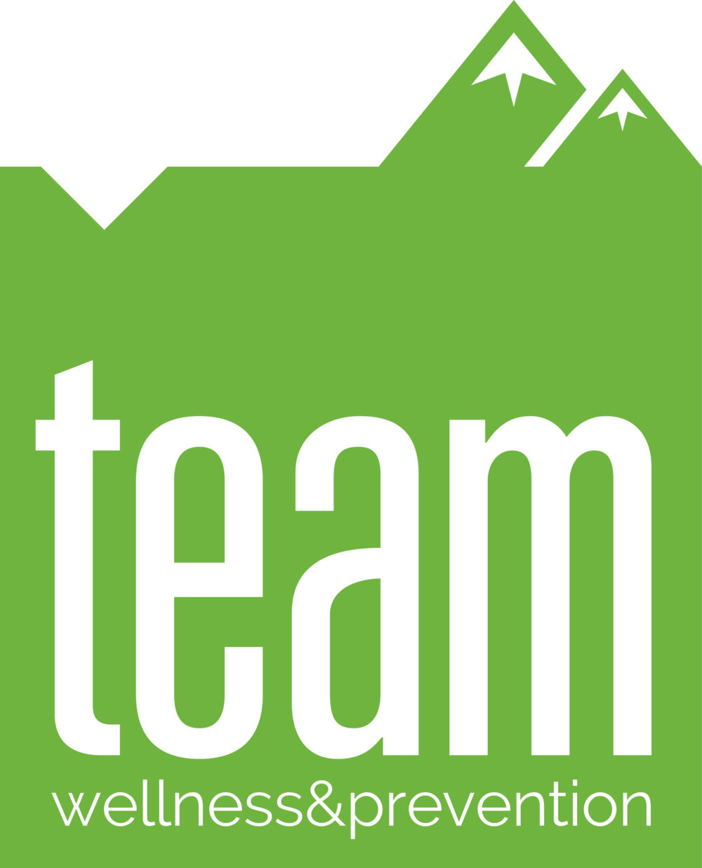 TEAM W&P Logo.png