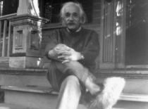 albert-einstein shoes 2
