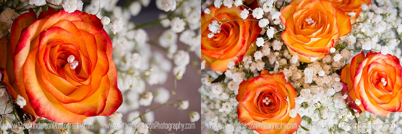 Brazos Springs Wedding Photographer (4)