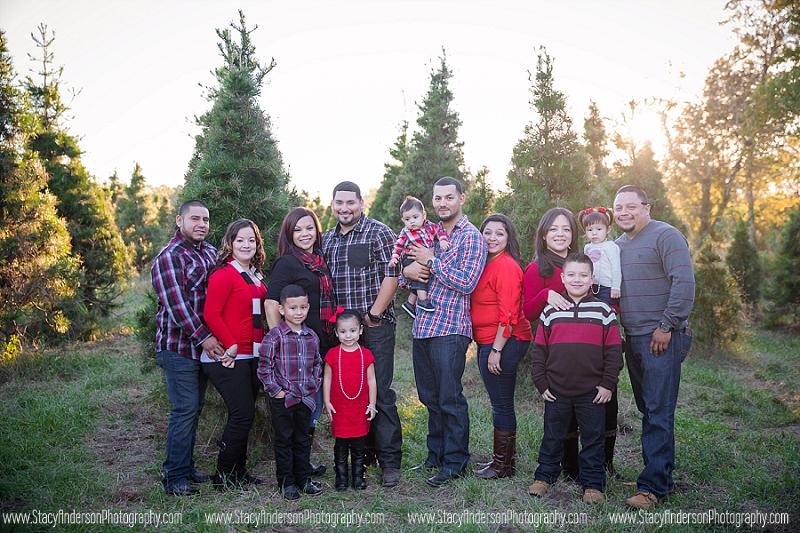 Big family group photo (18)