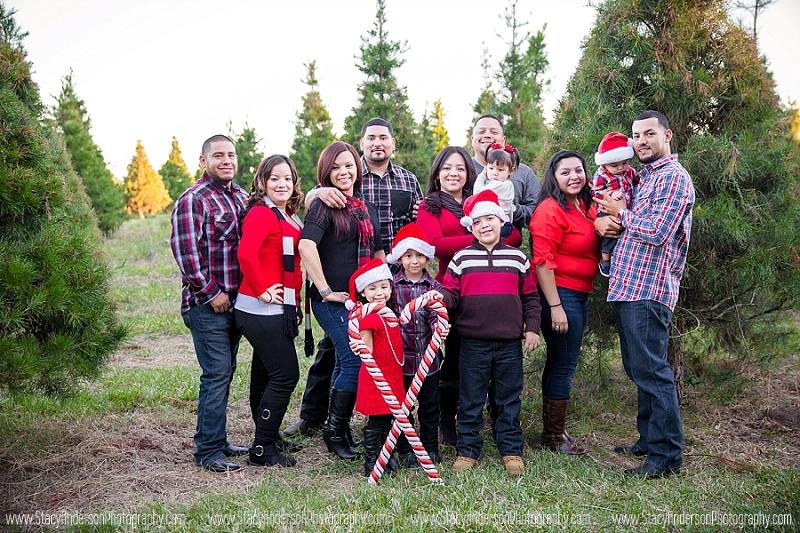 Big family group photo (23)