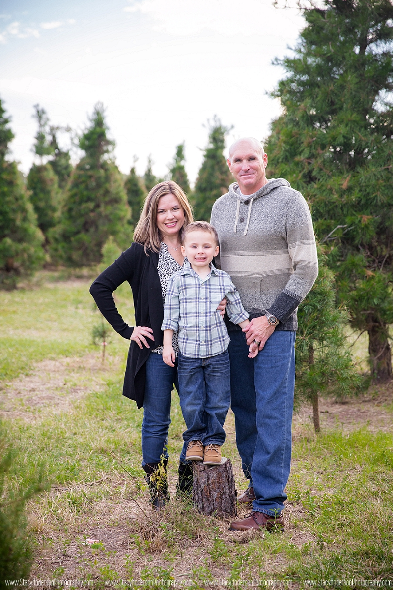 Holiday Acres Tree Farm Photographer (12)