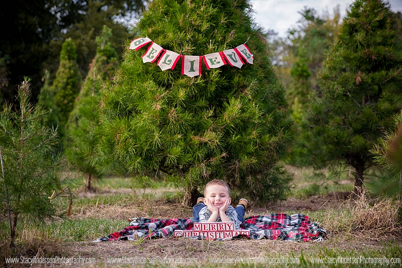 Holiday Acres Tree Farm Photographer (6)