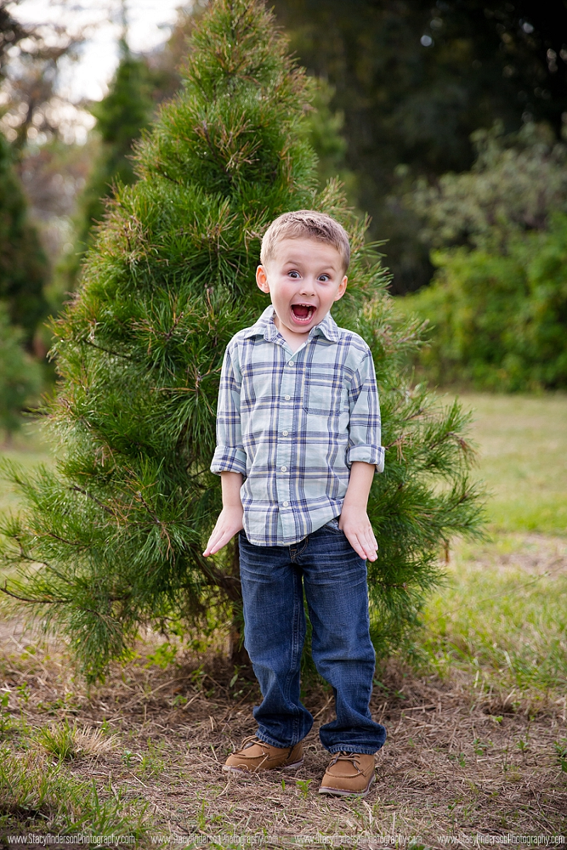 Holiday Acres Tree Farm Photographer (7)