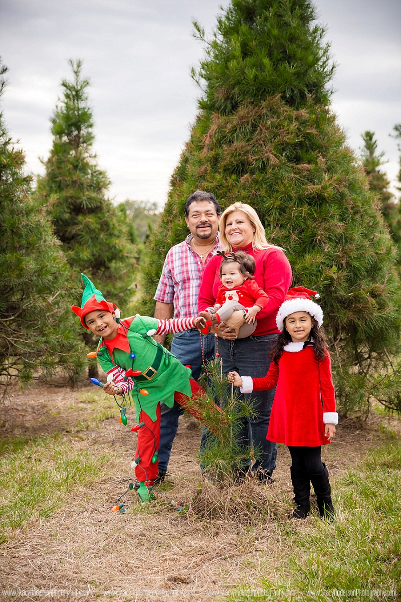 Large Family Christmas Photos (25)