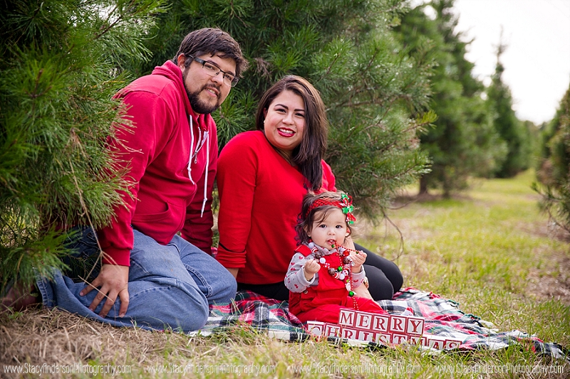 Large Family Christmas Photos (5)