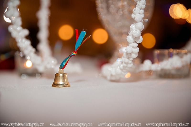 Ashelynn Manor Wedding Photographer (53)