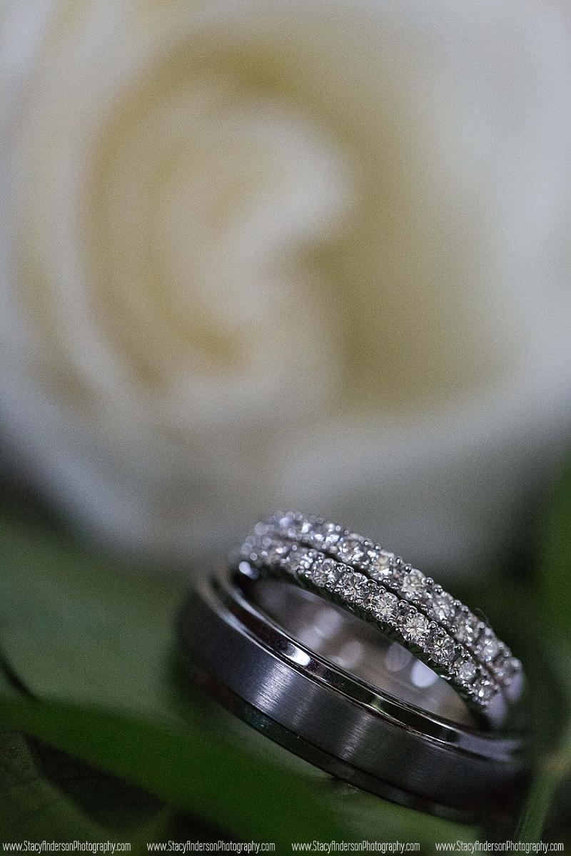 Crystal Springs Wedding Photographer_0084