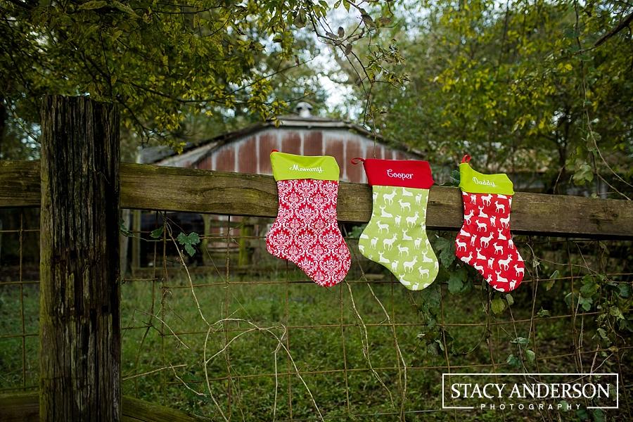 Holiday Acres Christmas Tree farm Family Photographer (6)