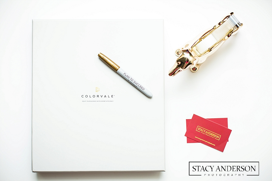 Stacy Anderson Photography Colorvale Planner_1076