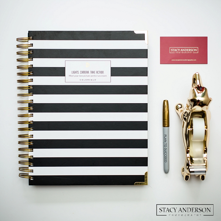 Stacy Anderson Photography Colorvale Planner_1078