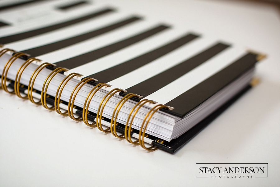Stacy Anderson Photography Colorvale Planner_1086