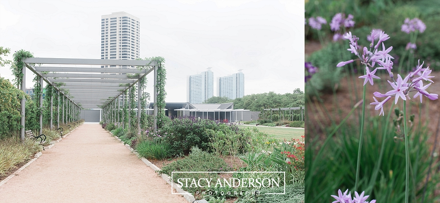Stacy Anderson Photography Houston McGovern Centennial Gardens_1622