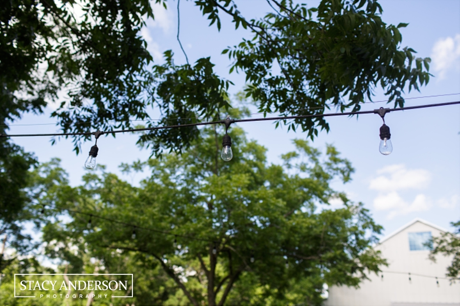 Stacy Anderson Photography Chandelier Grove_0024