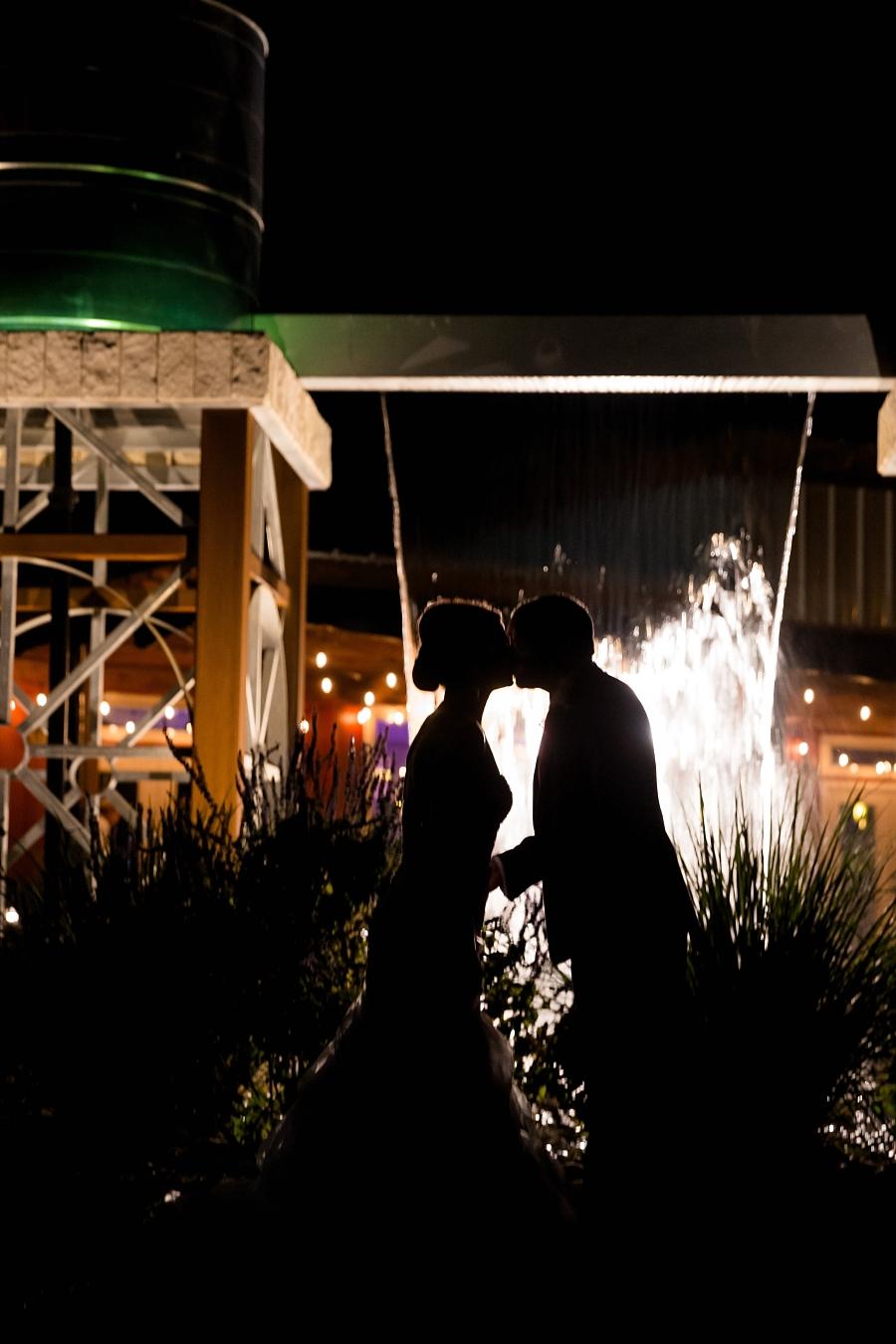 Stacy-Amderson-Photography-Houston-Fredericksberg-Wedding-Photographer_0072.jpg