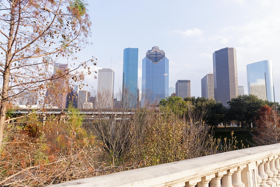 Stacy-Anderson-Photography-Houston-Courthouse-Vic-Anthony-Wedding-Photographer_0001.jpg