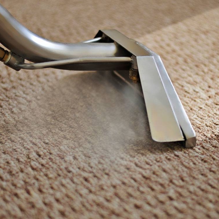 carpet-cleaning-north-coast-floor