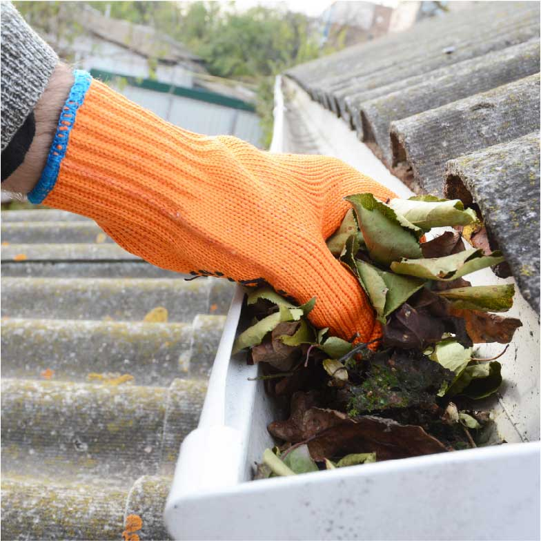 gutter cleaning clearing north coast