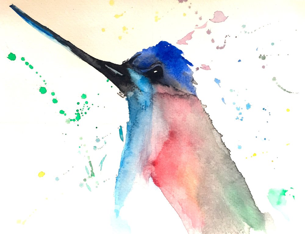 Hummingbird Owen O'Shea Watercolour