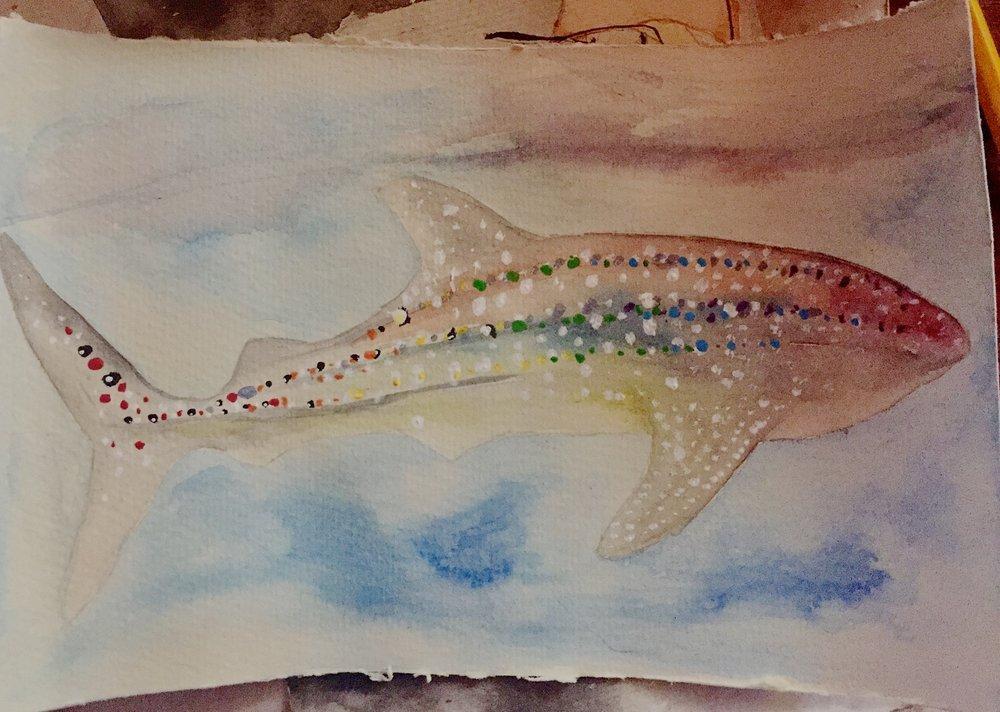 Whale Shark ( Rhincodon typus ) Elizabeth Slingsby Watercolour