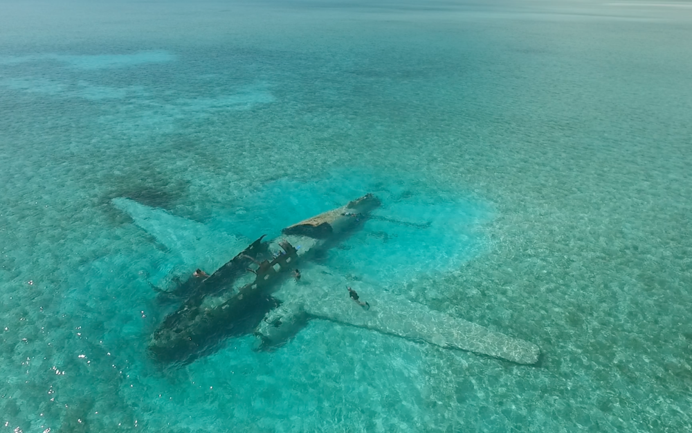 Cartel Plane Wreck - Normans Cay 2017