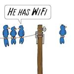 Mac WiFi copy.png