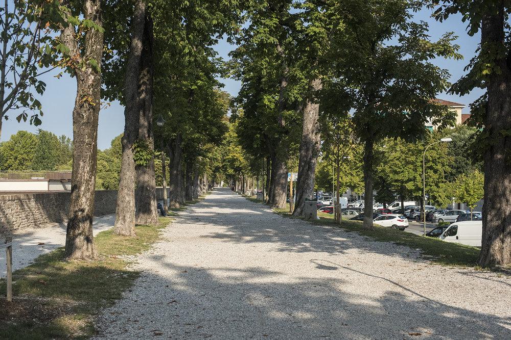 AS17-02101 Pedestrian road on the city wall, Treviso, Veneto