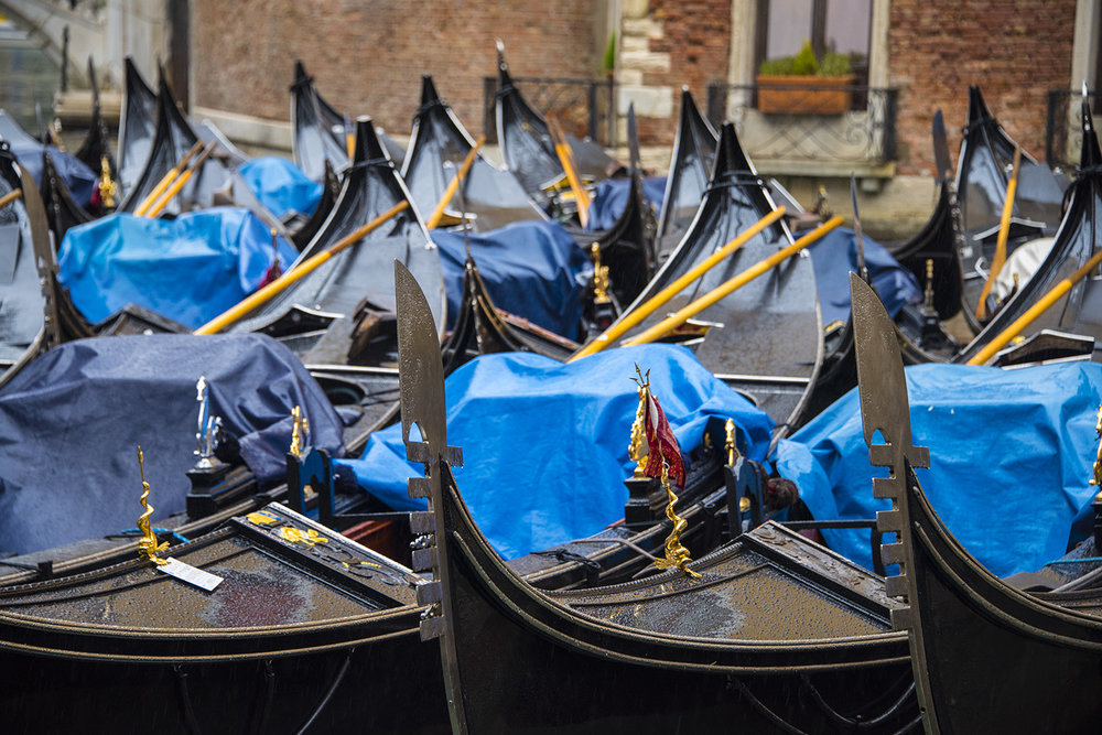 Gondolas moored and unused in the Orseolo Basin - in the rain