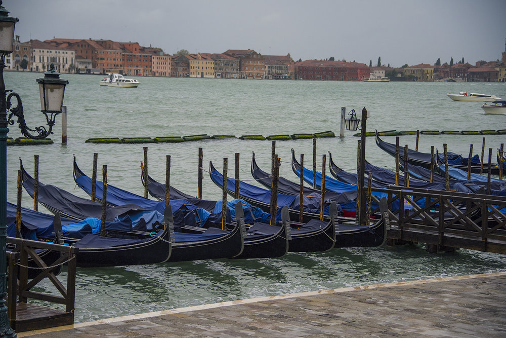 Gondolas lined up under covers on River degli Schiavoni - in the rain