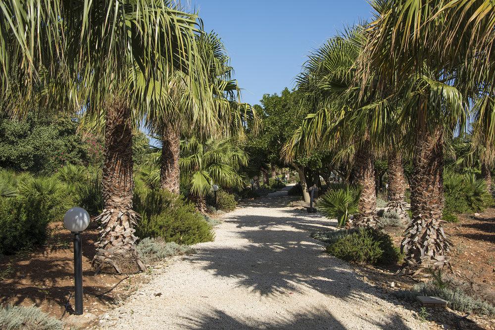 Nino Castiglione Garden, San Cusumano, Erice