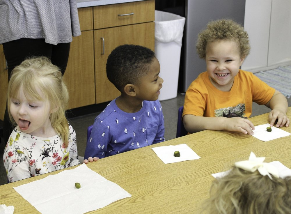 Taste Test Experiment - Students in the three-year-old classroom participate in a taste test experiment. Teachers introduce the letter