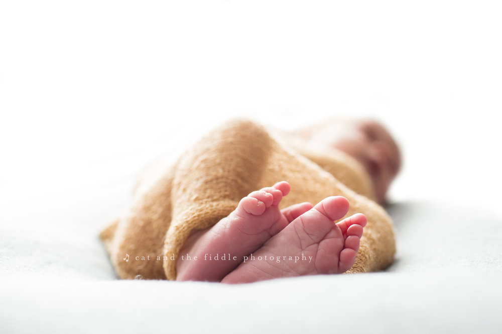 Easton MD Newborn Photographer 7.jpg