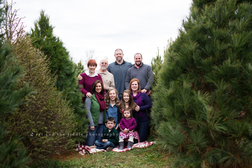 Centreville Family Photographer 7.jpg