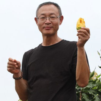 Dr Wang Wei   Director of the Guangxi Museum in Nanning, is an active paleontologist and is an expert on the caves and terraces in the Bubing Basin. He has been working on reconstructing the palaeoenvironments and evolution of Giganto for over 20 years.