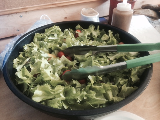 16. Salad for lunch with lettuce harvested from the garden.JPG