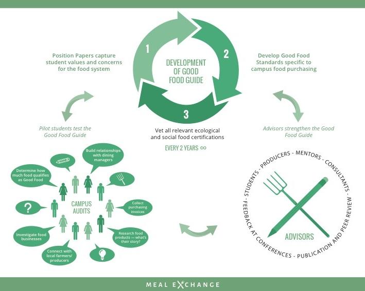 Cycle of Development -